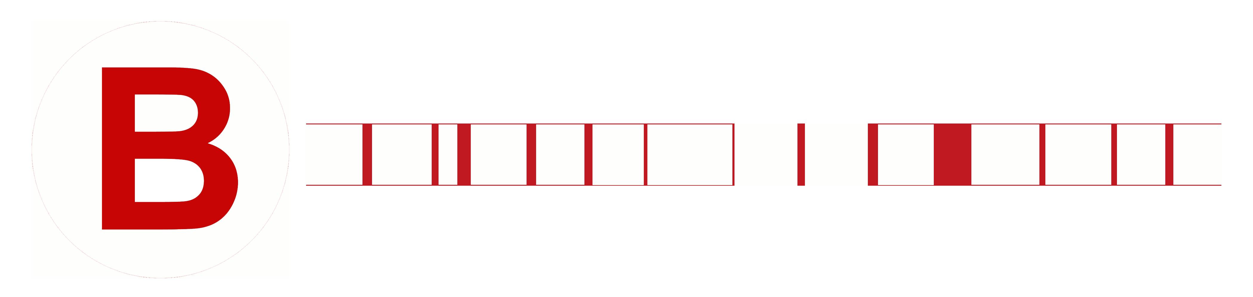 Bridlewood Mall Logo